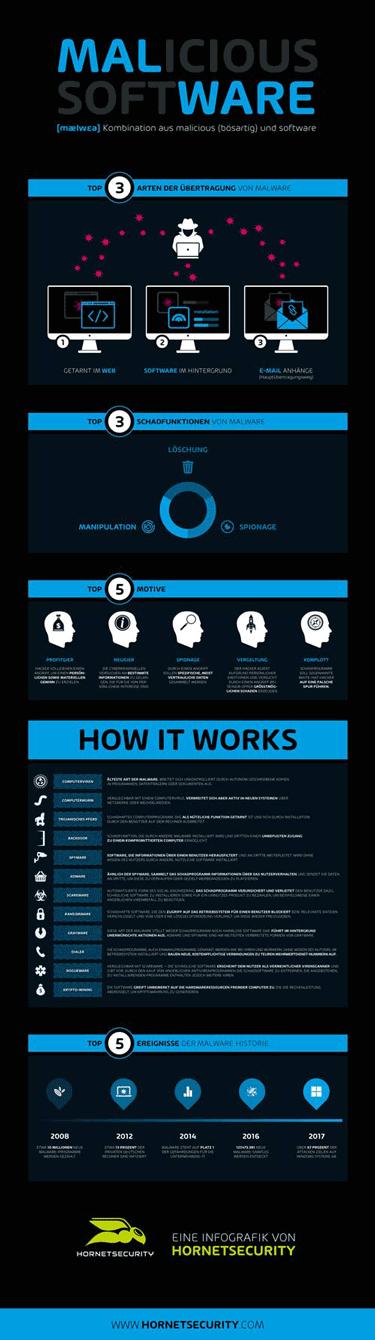 Malware Infografik von Hornetsecurity