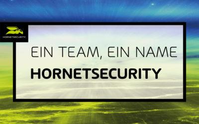 Der Umzug ist gelungen: Spamina heißt jetzt Hornetsecurity