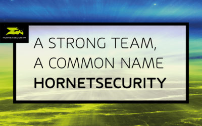 The move is a success: Spamina is now called Hornetsecurity
