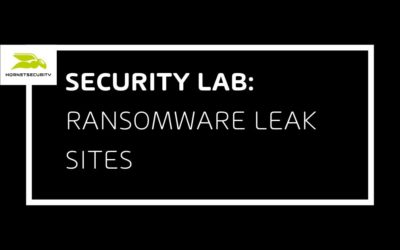 Leakware-Ransomware-Hybrid Attacks