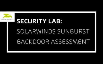 SolarWinds SUNBURST Backdoor Analyse