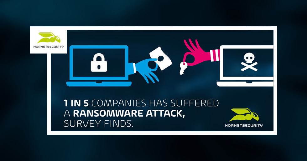 1 in 5 companies has suffered a ransomware attack, survey finds